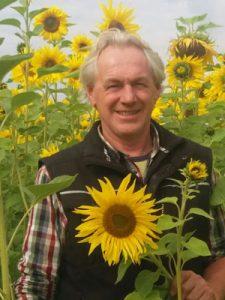 Sonnenblumen_zum_Selberschneiden